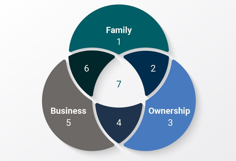 family business circles model