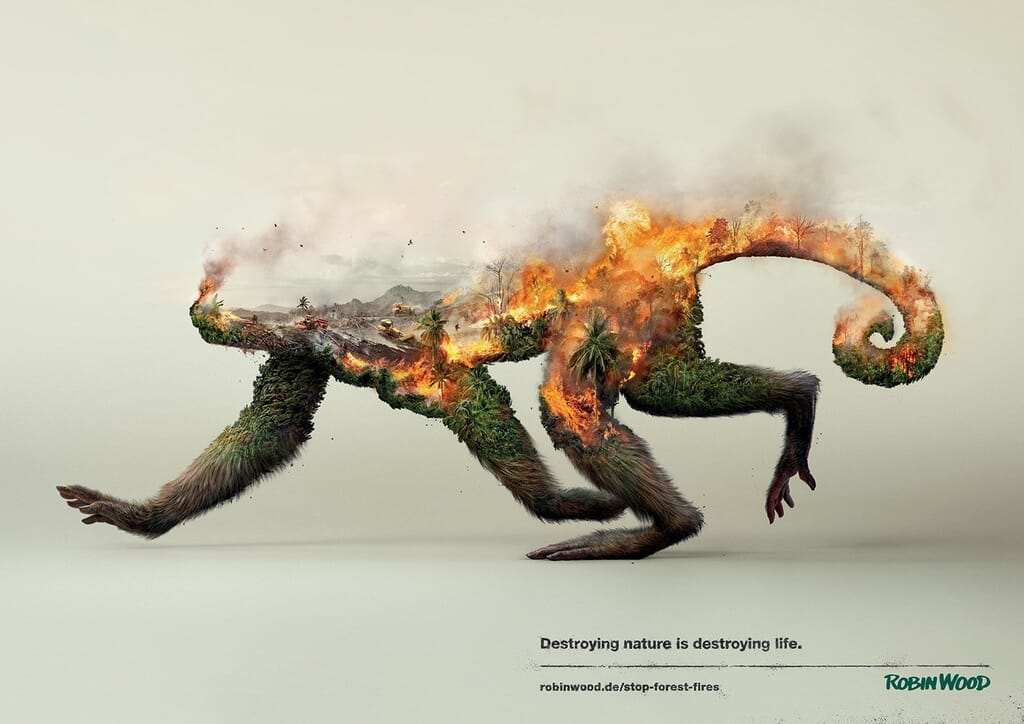 Social-advertising-forest-monkey-burning
